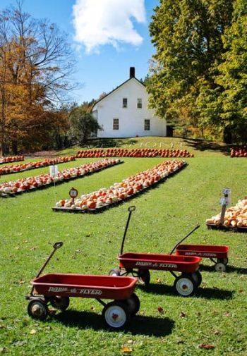 vermont pumpkin patch with radio flyer wagons
