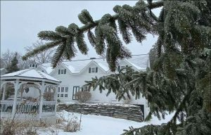 pine boughs in foreground of snow covered yard with white gazebo and building