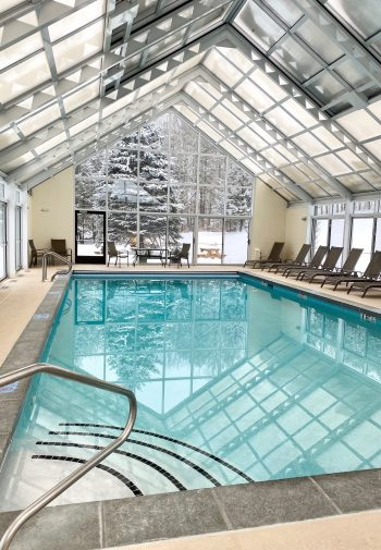 Blue indoor pool with glass roof and snowy pine tree outside window.