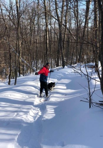 Man XC skiing with dog