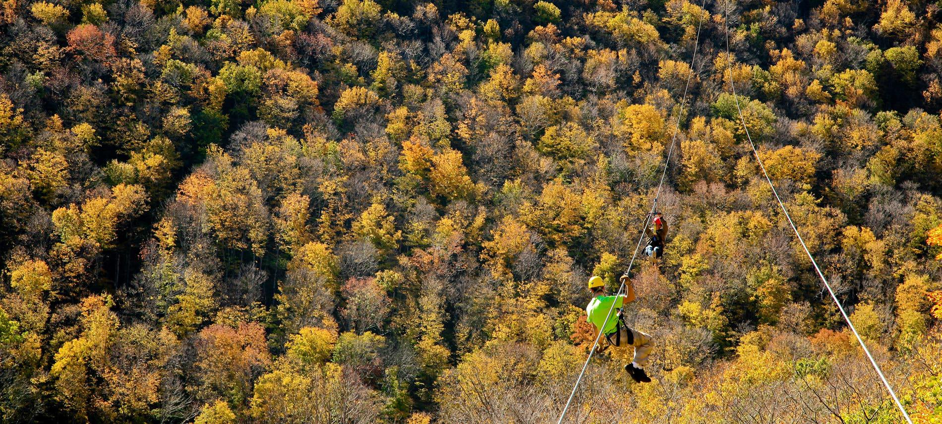 Aerial view of two people zip-lining over hundreds of trees covered in fall foliage